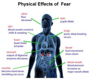 understanding-fear